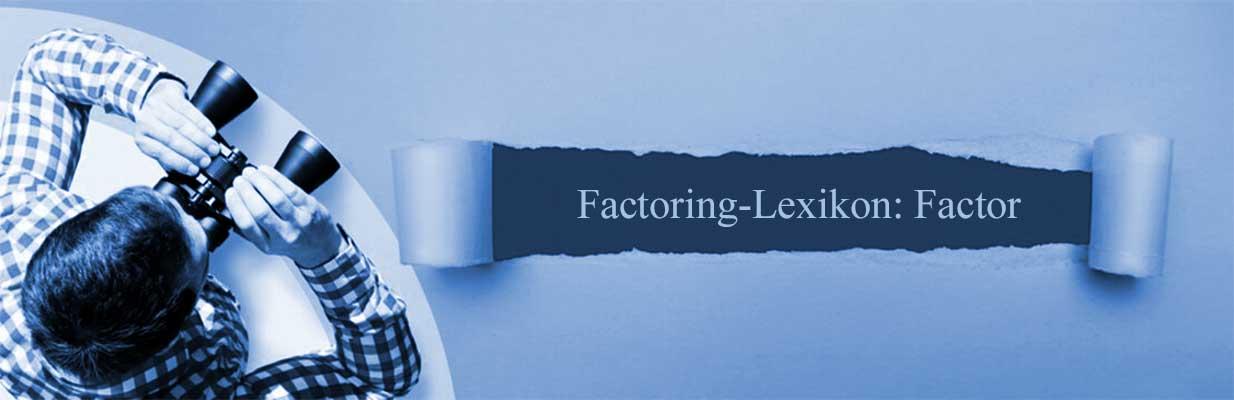 Factor: einfach erklärt